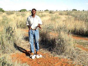 Namibia - Kalahari mit Guide - Namibia Familienreise