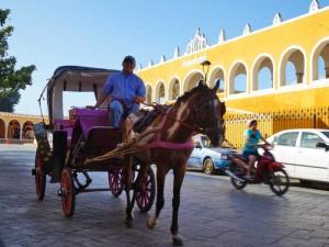 fly drive mexico met kinderen izamal koets