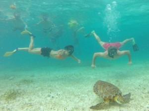 mexico-familiereis-snorkelen-schildpad
