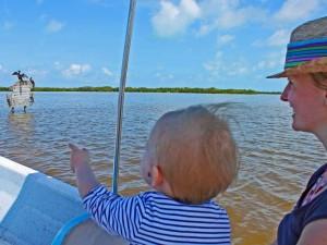 rondreis yucatan met kinderen rio lagartos