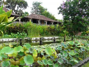 Amed: grüne Gartenanlage am Tiratagangga Wasserpalast