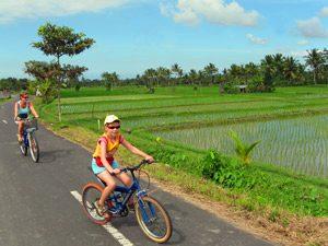 Bali Highlights: Familie bei einer Radtour in Ubud