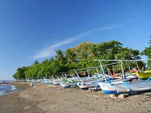 Rundreise Bali & Komodo: Strand mit Booten bei Lovina auf Bali
