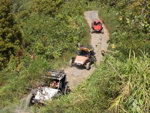Bali Rundreise: Buggy Tour durch die Natur in Munduk