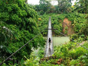 Hängebrücke in Tangkahan