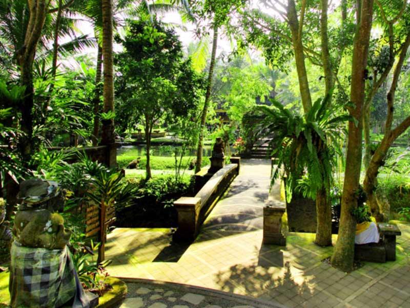 Gepflegte Gartenanlage unserer Komfortoption in Ubud