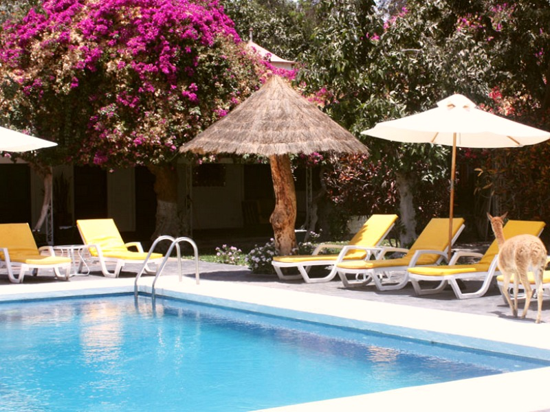 Ballestas eilanden & Nazca lijnen - hotel zwembad