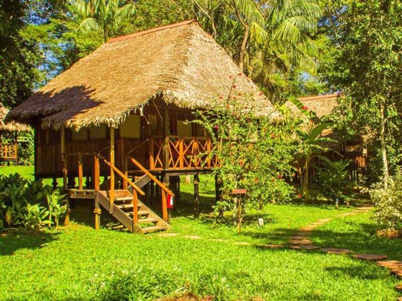 Amazone Peru Kids - comfort lodge