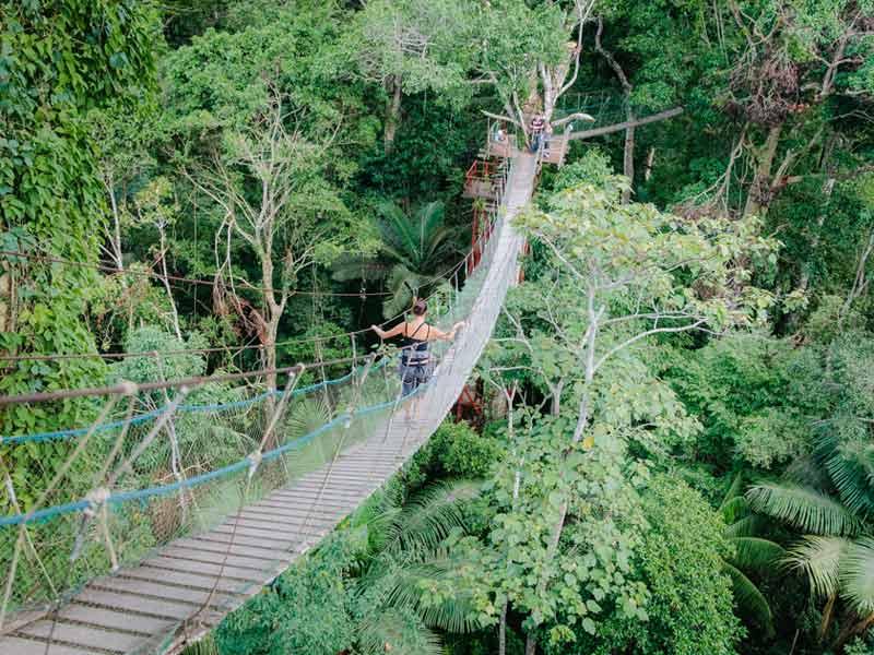 Amazone Peru Kids - canopy walk