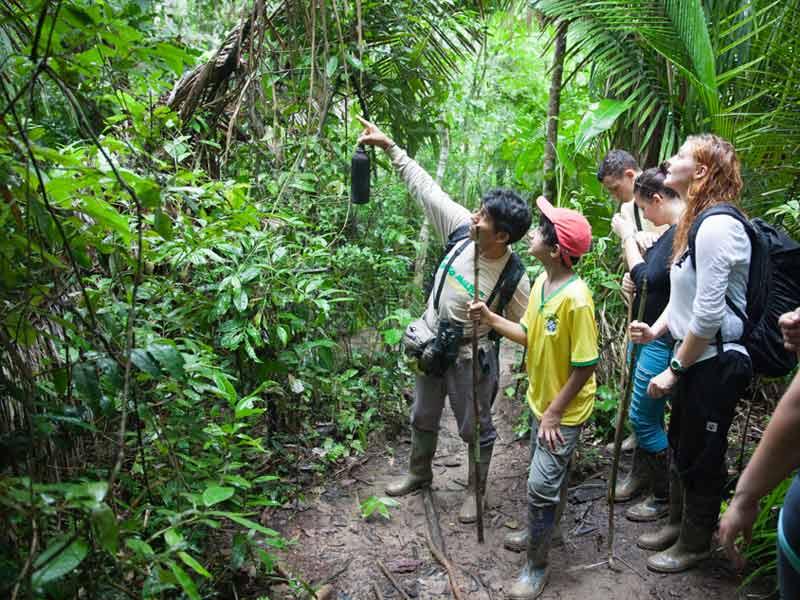 Amazone Peru Kids - jungle walk
