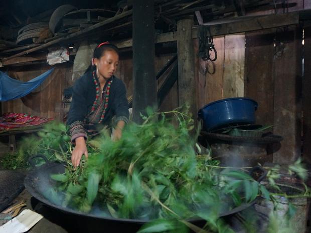 Sapa Vietnam - homestay