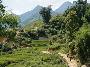 Sapa Vietnam met kinderen - hike