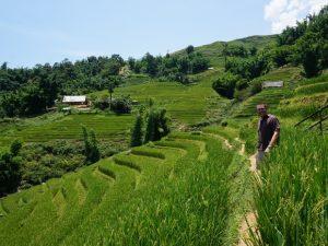 Rondreis Vietnam 3 weken - trekking Sapa
