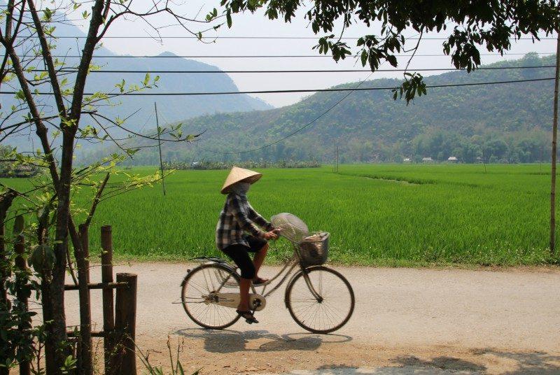 Thuis bij de Thai