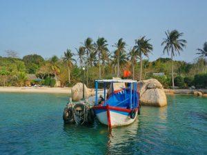 Vietnam rondreis met kinderen - Palmeneiland