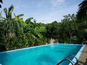jungle trekking Phong Nha Vietnam - hotel Phong Nha