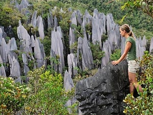 pinnacles mului borneo