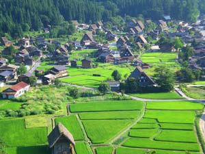Shirakawago - Japan-reis