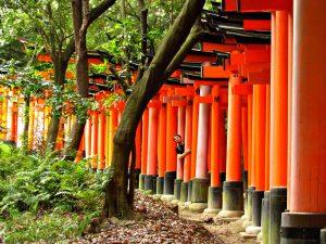 Steden Japan: Kyoto