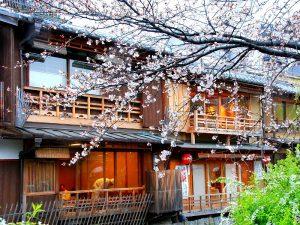 Reisinformatie - beste reistijd Japan
