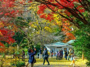 Japan tijdens herfst
