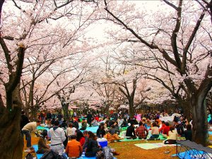 Japan, Tokyo in de Lente