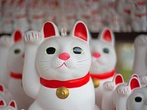 zeg de tempels in Japan gedag, tijd om naar huis te gaan