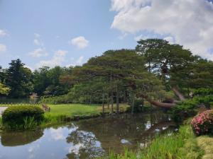 Japanse Tuin Kenrokuen