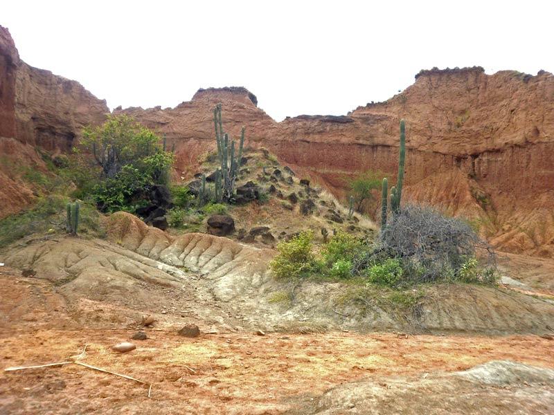 Rote Klippen in der Tatacoa Wüste