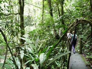 Panama Kolumbien Rundreise - El Valle
