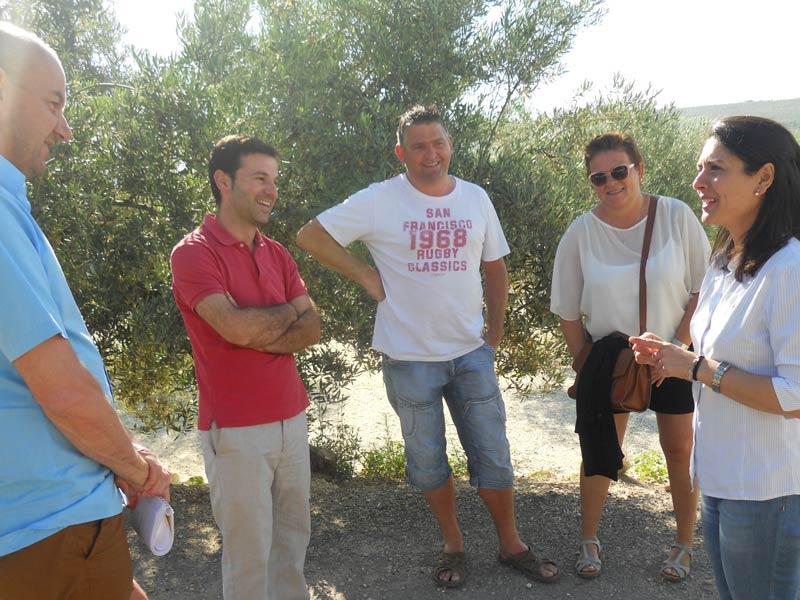 Olivenöl Olivenprobe Olivenmühle Andalusien Reise