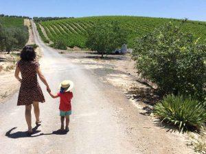 Andalusien mit Kindern Olivenmühle Ausflug