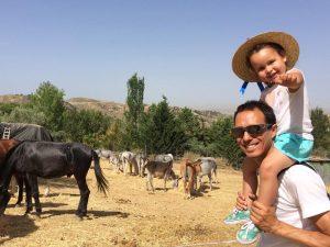 Andalusien Rundreise mit Kindern Stier-Route