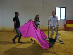 Weiße Dörfer Andalusien Stierfarm Besuch