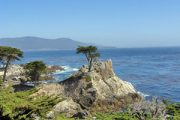 Rondreis 5: California dreamin'