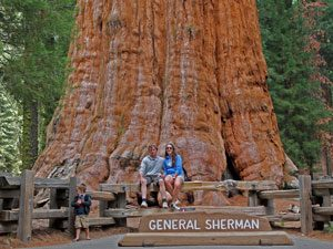 Sequoia_generalSherman