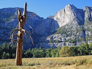 Yosemite_boom