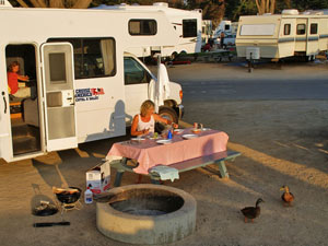 Flexibel met camper reizen