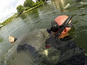 Florida-reis - Zeekoe
