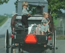 Op bezoek bij de Amish