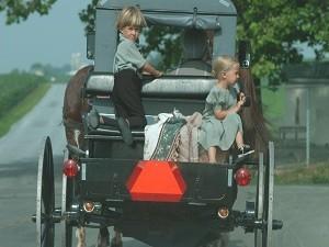 Amish koets