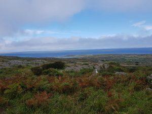 Galway Irland Rundreise Ausflug Inis Mór