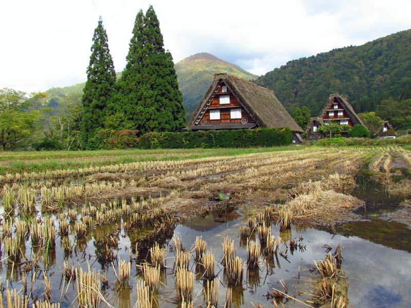 Japan traditionell und modern erleben Shirakawago