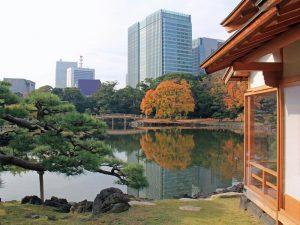 Tokio Reise in die Stadt der Superlative