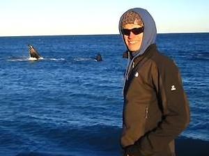De zeeleeuw, de walvis en de pinguïn