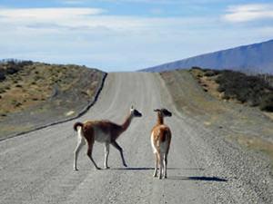 Torres del Paine: onverharde wegen