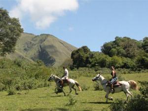 guachos paardrijden