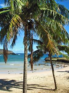 Paaseiland Chili Tropisch strand