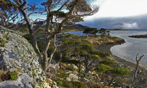 Cruise Patagonië