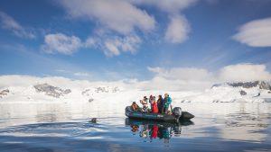 Antarctica zeehonden